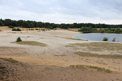 Lommeles Сахара охраняемая территория в северной Бельгии с уникально малой песочной пустыней Стоковое Изображение
