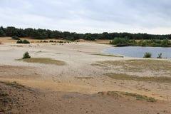 Lommeles Sahara per skyddat område i norr Belgien med en unik liten sandig öken Fotografering för Bildbyråer
