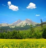 Lomnicky and Kezmarsky peak in High Tatras, Slovakia Stock Photos
