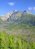 Lomnicky Peak in High Tatras, Slovakia Stock Images