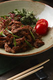 Lomo a la Stroganoff en japonés en sésamo con la salsa y las cebollas de soja Imagen de archivo