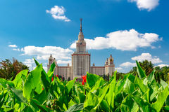 Lomonosov Moscow State University MSU. View of the main building on Sparrow Hills Stock Photos