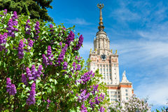 Lomonosov Moskwa stanu uniwersytet, Moskwa, Rosja Zdjęcie Stock