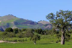 Lompoc California farms mountains Royalty Free Stock Images