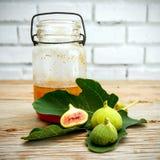 Lona e cartaz do fruto do figo do vintage Imagens de Stock Royalty Free