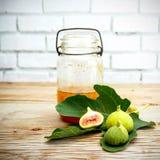 Lona e cartaz do fruto do figo do vintage Fotografia de Stock
