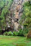 Londa is klippen en de plaats van de holbegrafenis in Tana Toraja, Zuiden Sulaw royalty-vrije stock foto's