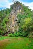 Londa is klippen en de plaats van de holbegrafenis in Tana Toraja, Zuiden Sulaw stock afbeeldingen