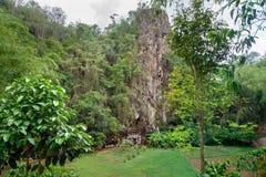 Londa is klippen en de plaats van de holbegrafenis in Tana Toraja, Zuiden Sulawesi, Indonesië stock foto