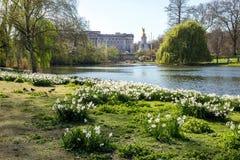 LONDEN, het UK - 14 April, 2015: Buckingham Palace en tuinen in Londen in een mooie dag Stock Fotografie