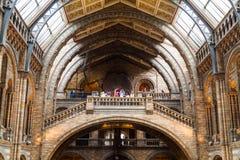LONDEN, het UK, Biologiemuseum Stock Foto