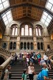 LONDEN, het UK, Biologiemuseum - de bouw en details Royalty-vrije Stock Afbeeldingen
