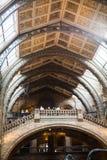 LONDEN, het UK, Biologiemuseum - de bouw en details Stock Foto's