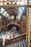 LONDEN, het UK, Biologiemuseum - de bouw en details Royalty-vrije Stock Afbeelding