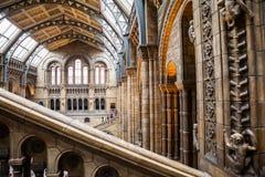 LONDEN, het UK, Biologiemuseum - de bouw en details Royalty-vrije Stock Foto's