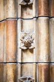 23 07 2015 LONDEN, het UK, Biologiemuseum - de bouw en details Stock Foto