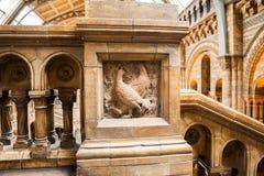 LONDEN, het UK, Biologiemuseum - de bouw en details Stock Afbeeldingen