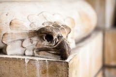 23 07 2015 LONDEN, het UK, Biologiemuseum - details Stock Foto's