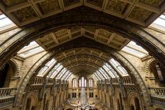 Londen, het UK - 25 Juli, 2017: De nieuwe Hintze-zaal in het Biologiemuseum Royalty-vrije Stock Afbeeldingen