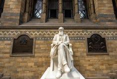 Londen, het UK - 25 Juli, 2017: Het Charles Darwin-marmer Stock Fotografie