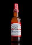 LONDEN, HET UK - 21 MAART, 2017: Fles Budweiser-Bier met nieuwe draai van GLB op zwarte Een Amerikaans die lagerbier eerst in 187 Royalty-vrije Stock Afbeeldingen