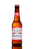 LONDEN, HET UK - 21 MAART, 2017: Fles Budweiser-Bier op witte achtergrond, een Amerikaans die lagerbier eerst in 1876 wordt geïnt Stock Foto