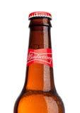 LONDEN, HET UK - 21 MAART, 2017: Fles Budweiser-Bier op witte achtergrond, een Amerikaans die lagerbier eerst in 1876 wordt geïnt Royalty-vrije Stock Afbeeldingen