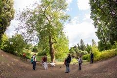 28 07 2015, LONDEN, het UK, Mening van Kew-Tuinen Stock Fotografie