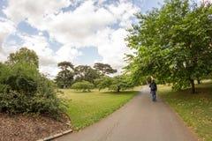 28 07 2015, LONDEN, het UK, Mening van Kew-Tuinen Royalty-vrije Stock Afbeelding