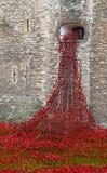 Londen, het UK - 18 Oktober, 2014: Geveegde Lan van de kunstinstallatie 'Bloed stock afbeelding