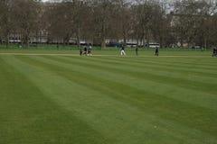Londen, Hyde Park, freshy gemaaid gras Stock Foto's