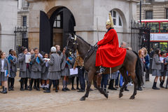 LONDEN - MAART 6: Badmeester van de Cavalerie van het Queenshuishouden  Royalty-vrije Stock Foto