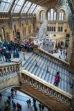 Londen Nationaal geschiedenismuseum stock fotografie