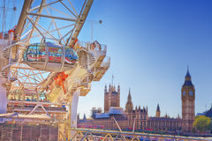 London ögonfröskida Arkivbild