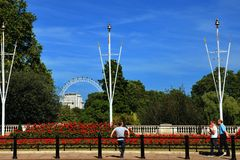 London. Eye and st James Park from buckingham palace place Stock Photography