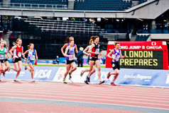 London 2012 test events: women's 3000m Royalty Free Stock Photos