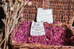 Dried rose petals in The Old Operating Theatre Museum and Herb G stock image