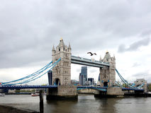 London bridge and city views Royalty Free Stock Images