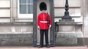 London Buckingham Palace, Armed English Guard Marching and Guarding.  stock video footage
