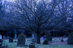 London cemetery Royalty Free Stock Photography