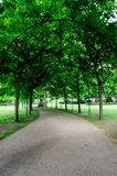 London city / England: Alley in Russell Square park stock photography