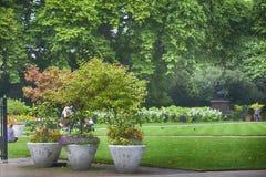 Victoria Embankment Gardens in London. LONDON, ENGLAND - AUGUST 22, 2017 Victoria Embankment Gardens in London Stock Photos