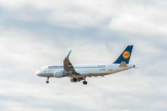 LONDON ENGLAND - AUGUSTI 22, 2016: Landning för flygbuss A320 för D-AIZY Lufthansa i den Heathrow flygplatsen, London Arkivfoton