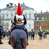 In london england ho rse and cavalry for    the queen Royalty Free Stock Photo