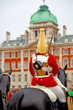 In london england horse    and cavalry Royalty Free Stock Photos