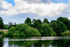 Hyde Park, one of the largest parks in London. LONDON, ENGLAND - JULY 23, 2016: Nature of the Hyde Park, one of the largest parks in London, and one of the Royal Stock Photography
