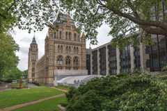 London England - Juni 18 2016: Fantastisk sikt av naturhistoriamuseet, London Arkivfoton