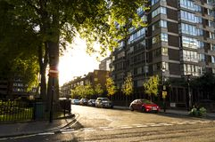 Cambridge square in London at sunset Stock Image