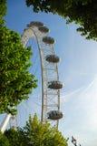 The London Eye as seen through trees. Royalty Free Stock Photo