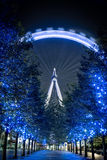 London Eye at dusk. On a winters evening Royalty Free Stock Photos